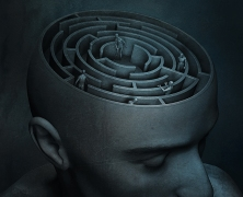 The psychology of the maze