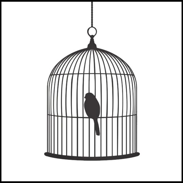 Semiotics Of The Birdcage Culture Decanted