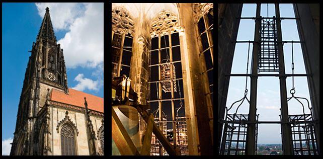 Munster Gibbet Cage